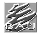 BAU - Client - Guru IT